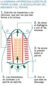 beneficios-abdominal-hipopresiva