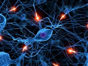 efectos de dormir poco en sistema nervioso