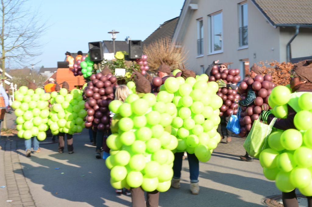 disfraz-de-uvas